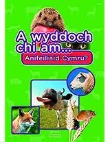 A Wyddoch Chi am Anifeiliaid Cymru? (Cyfres a Wyddoch Chi)