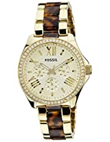 Fossil End of Season Cecile Analog Champagne Dial Women's Watch - AM4499I