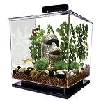 Tetra 29095 Cube Aquarium Kit, 3-Gallon