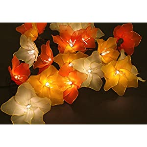 Fabric flowers fairy lights - Dianthus