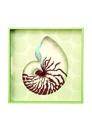 rockflowerpaper Serving Tray (Nautilus)