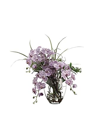 Allstate Floral Phalaenopsis, Skimmia & Twig in Glass Vase, Two Tone Violet