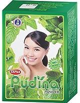 Sapna Pudina powder 5X100gm