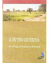 A Un Tiro De Piedra/ A Shot of a Rock (Textos Del Desorden)