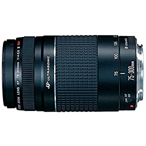 Canon EOS EF 75-300mm f/4-5.6 USM III Telephoto Zoom Lens for Canon DSLR Camera
