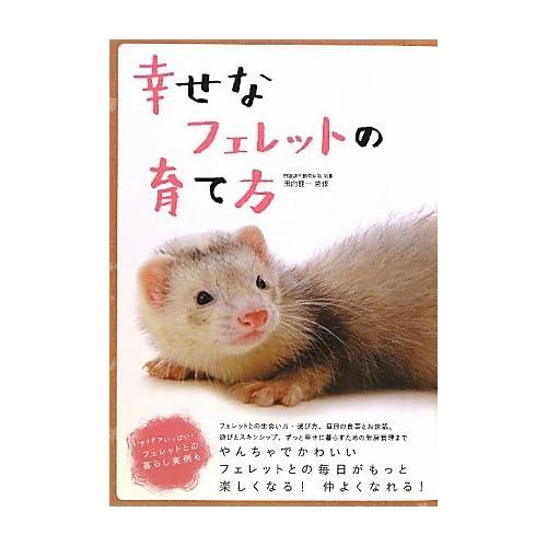 Book Review: The Wainscott Weasel by Tor Seidler | Mboten