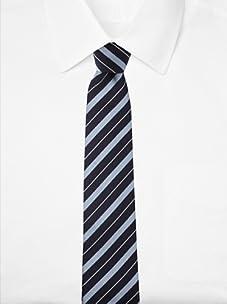 Aquascutum Men's Bold Stripe Silk Tie (Navy/Light Blue)