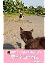 cat cat cat Japanese cat photo album