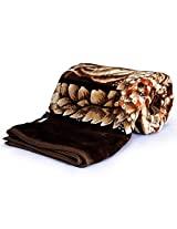 Little India Floral Mink Double Blanket - Coffee Brown (DLI4SBK220)