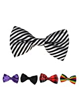 DBFF0021 Multi Satin Romance Boys Pre-Tied Bow Ties Set - 5 Styles Available By Dan Smith