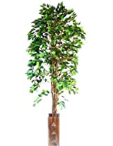 Ginni Bloom Artificial Green Ficus Tree (6 feet tall)