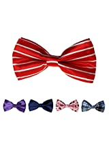 DBFF0011 Series Colors Satin Christmas Boys Boys Pre-Tied Bow Ties Set - 5 Colors Available By Dan Smith
