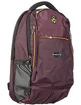 Amira Teflon 11.13 Ltrs Brown Laptop Backpack
