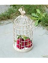 Deziwork Small Bird Cage