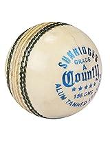 Ss Cricket Ball County