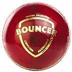 SG Bouncer Leather Ball