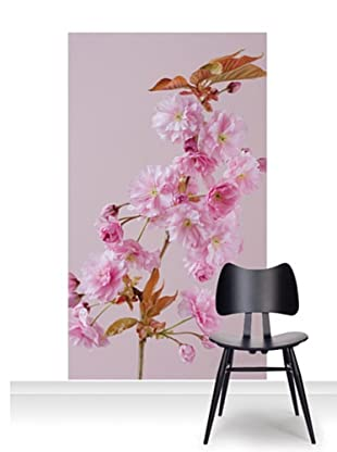 Clive Nichols Photography The Flowers of Prunus Kanzan Mural (Accent)