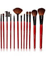 Shany 3-Piece Professional Brush Set