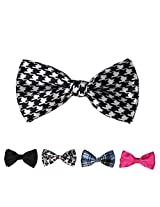 DBFF0023 Multi-colored Satin Economics Boys Pre-Tied Bow Ties Set - 5 Styles Available By Dan Smith