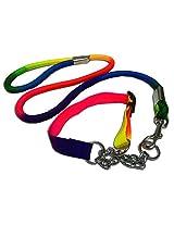 Dog Show Leash With Choke Collar Large