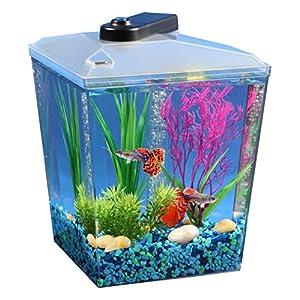 API 1 Gallon Corner View Fish Aquarium With Under Gravel Filter System