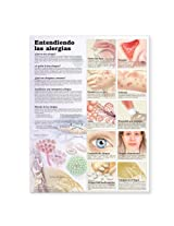Understanding Allergies Anatomical Chart in Spanish (Entendiendo Las Alergias)