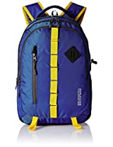 American Tourister Blue Laptop Backpack (70W (0) 01 001)