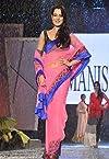 Amisha Patel Bollywood Replica Saree