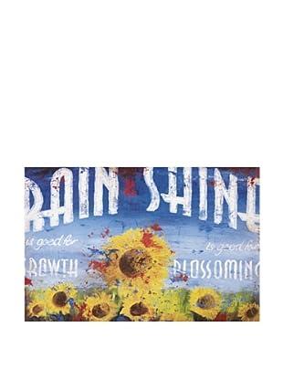 Rodney White Rain & Shine, 24