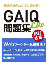 Eigogadekinakutemoukaru GAIQ Mondaisyu Lite Version