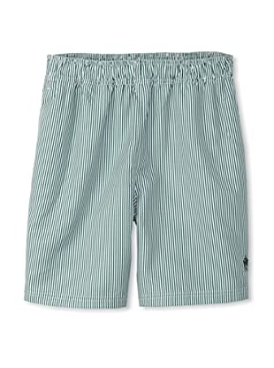 French Connection Men's Pinstriped Swim Trunks (Go Green)