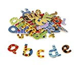 Magnetic Wooden Letters 58pcs