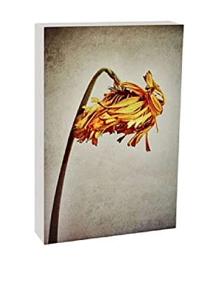 Art Block Floral Bow - Fine Art Photography On Lacquered Wood Blocks