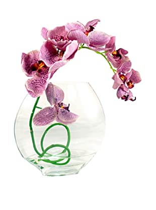 Creative Displays Lavender Orchid in Acrylic Water (Lavender)