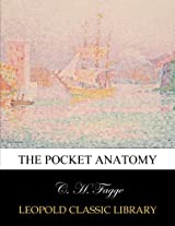 The pocket anatomy