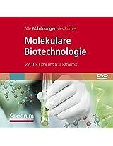 Molekulare Biotechnologie, Die Abbildungen Des Buches: Grundlagen Und Anwendungen