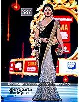 Bollywood Replica Saree Of Shreya Saran AE-387
