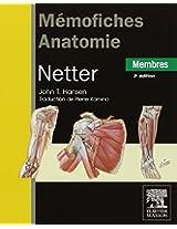 Memofiches Anatomie: Membres