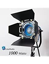LimoStudio 1000 Watt Photography Photo Video Studio Light Head, Film and Television Tungsten Fresnel Continuous Light Spotlight, AGG1028