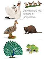 Schleich Water Animal Set Of 6: Duck, Retired Duckling, Beaver Swan With Cygnet, Frog And Large Peacock