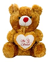 Valentines SHINY GOLDEN TEDDY by Glitters (23 inch)