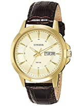 Citizen Analog Gold Dial Men's Watch - BF2012-08P