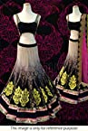 Bollywood Replica Model Viscose and Velvet Lehenga In Multicolour NC813