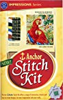 Anchor Stitch Kit - Winged Rainbows