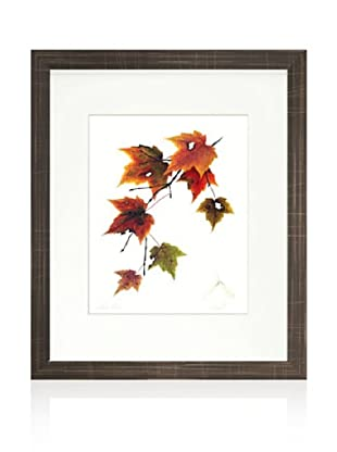 Maple Tree, Brown/White