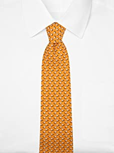 Hermès Men's Snail Tie (Orange/Brown)