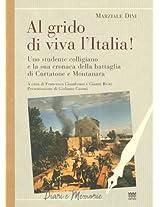 Al Grido Di Viva L'italia!: Uno Studente Colligiano E La Sua Cronaca Della Battaglia Di Curtatone E Montanara (Diari E Memorie)