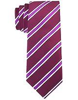 Scott Allan Men's Striped Necktie - Plum/Purple