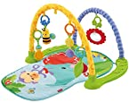 RainforestTMLink 'n Play Musical Gym