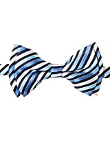 Retreez Retro Multi Tone Stripe Woven Microfiber Pre-tied Boy's Bow Tie - Blue - 4 - 7 years